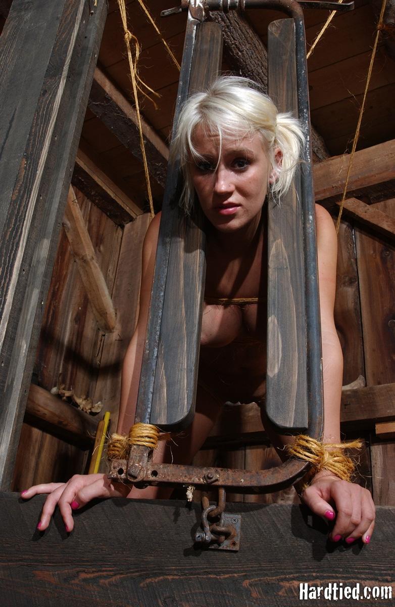 Insex farm bondage